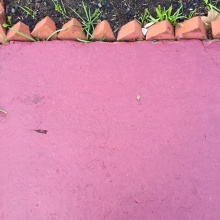 Abstract Pavement feat. Garden Bed, 2017