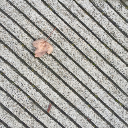 Abstract Pavement feat. Leaf, 2017