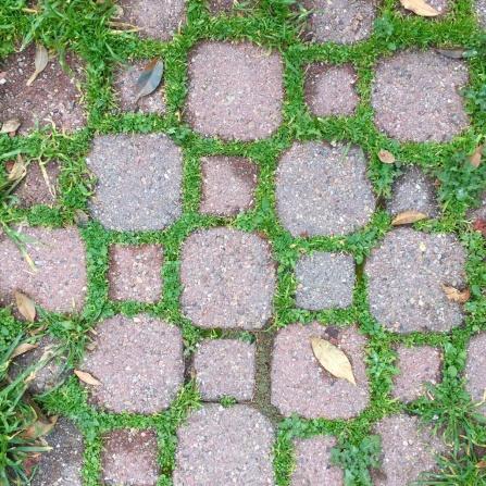 Brick Grid feat. Grass, 2017